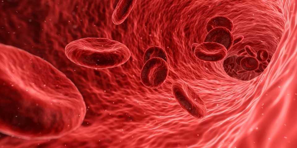 terapia de primera línea para el cáncer de próstata
